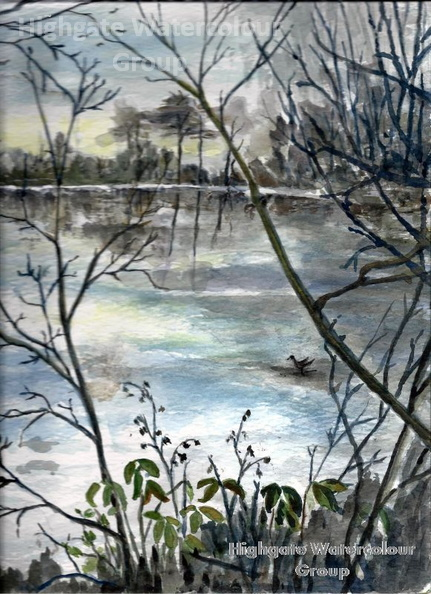 Kenwood_Bird_Sanctuary_Pond_in_Winter~1.jpg