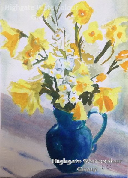 ernas_daffodils_and_narcissi_croped_IMG_0728.JPG