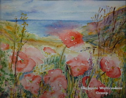 Cornish Poppies